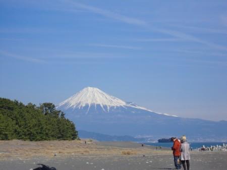 三保の松原からは、富士山がくっきり!!