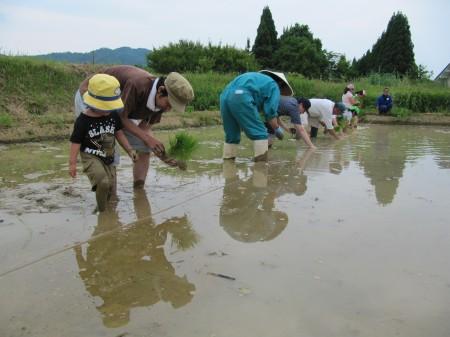 泥んこになりながら、田植えをしました