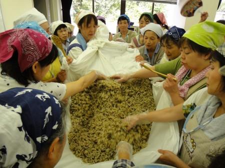 蒸し上がった材料を布に広げて冷まし、麹菌を振り入れ、 皆さんに混ぜ合わせてもらいました!