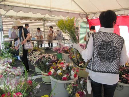 テントいっぱいに並ぶ盆花!