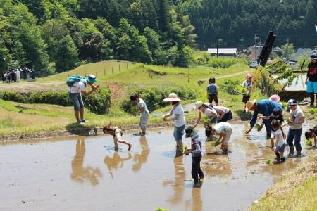 子どもたちも頑張って植えていました(^o^)天気が良くてよかったですね~☆