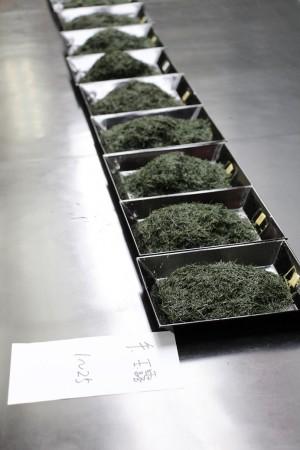 綾部・福知山・舞鶴から68点の出品。上質な出品茶が出揃いました(^o^)