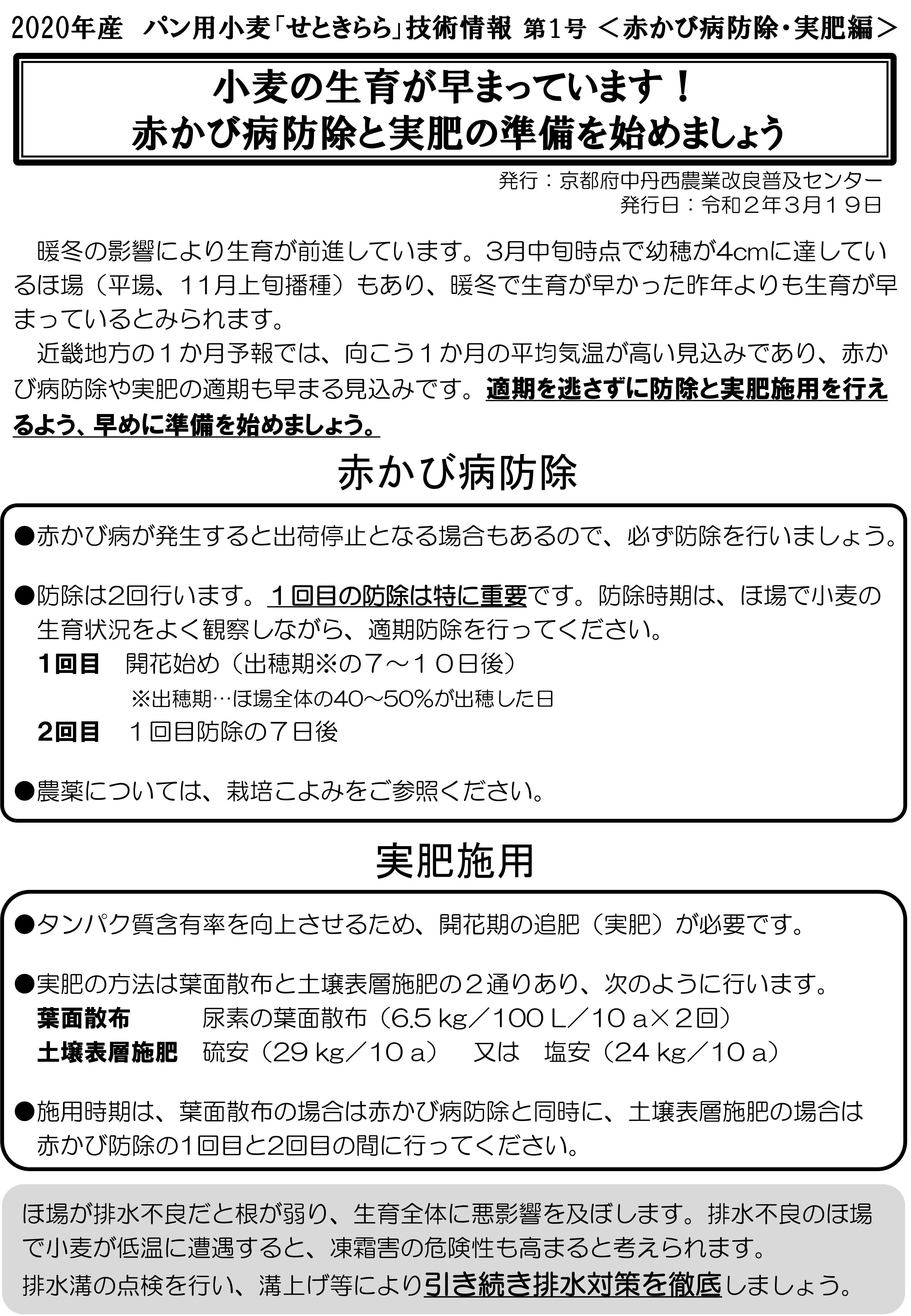 小麦技術情報の発行!