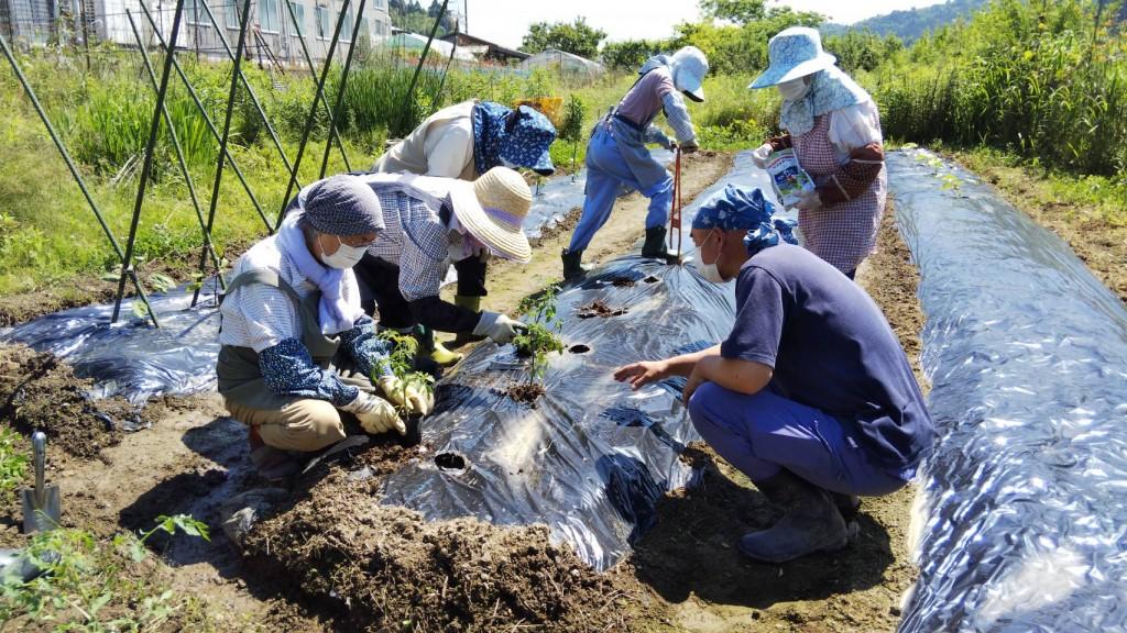【京都・にのくに】上林支店活性化委員会が農業教室を開催/200528